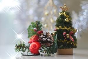 クリスマスについてのアンケート(女性/2018年/全国)