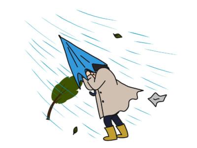 ときに命がけ!?ぶっちゃけ休みたい台風の日の通勤